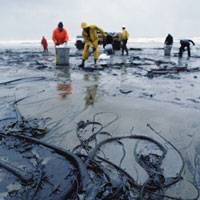 marine---oil-pollution